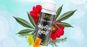 Holy Grail Terpene Spray